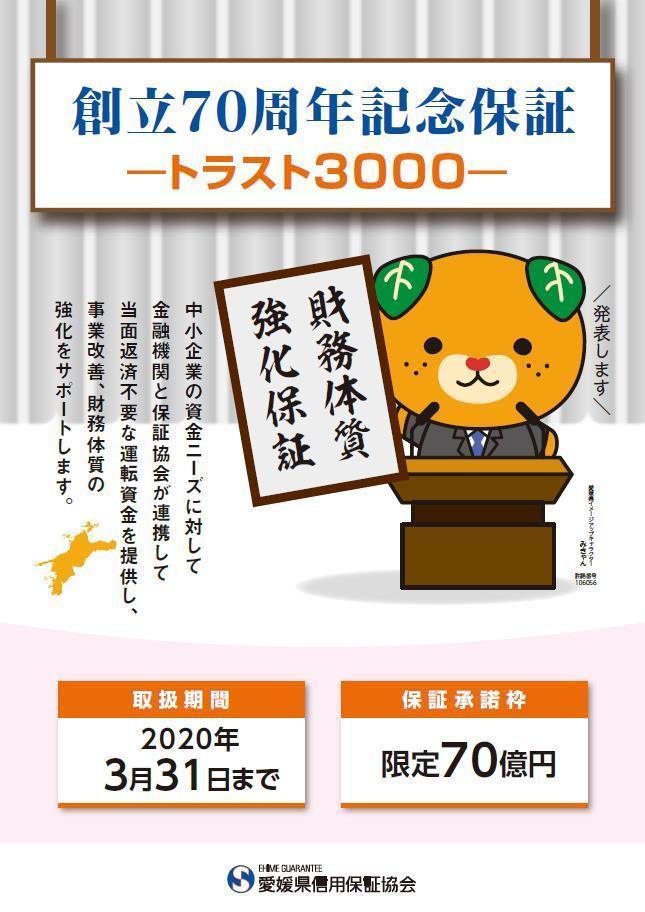 財務体質強化保証<br>(トラスト3000)